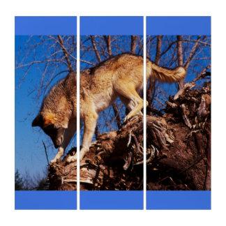 Wolf auf der Jagd Triptychon