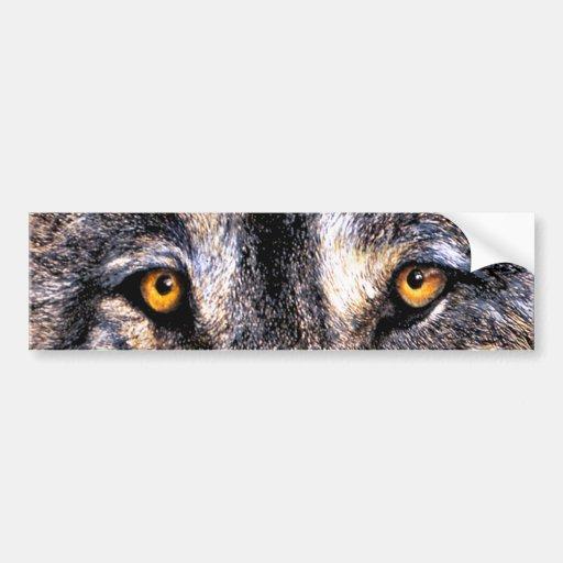 Wolf-Augen Autosticker