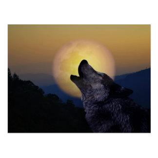 Wolf, der am Mond heult Postkarte