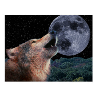 Wolf, der am Vollmond - Multi-Products-02 heult Postkarte