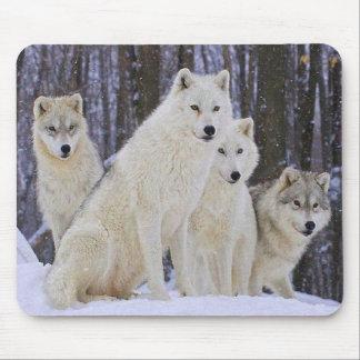 Wolf-Familie Mauspads