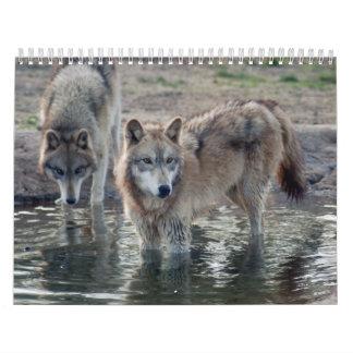 Wolf-grauer Wolf-Kalender Wandkalender