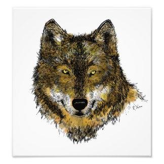 Wolf in der Farbe - Foto-Druck Fotodruck