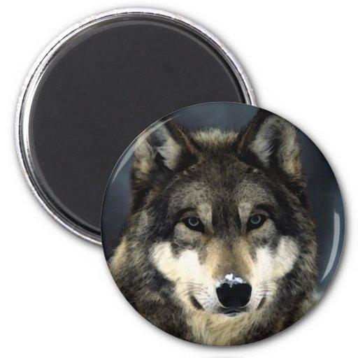 Wolf Magnete
