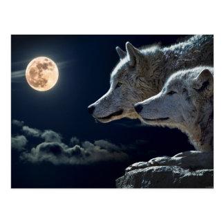 Wolf-Paar-Mond-Nachtgotische Fantasie Postkarte