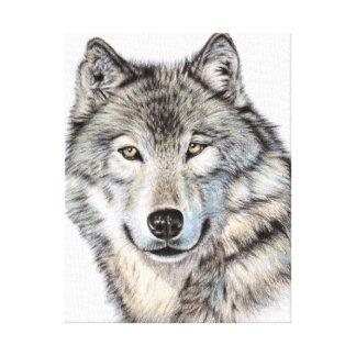Wolf Portrait Leinwanddruck