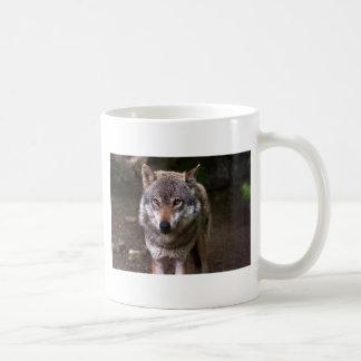 Wolf Tasse
