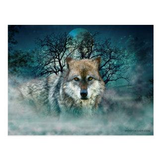 Wolf-Vollmond im Nebel Postkarte