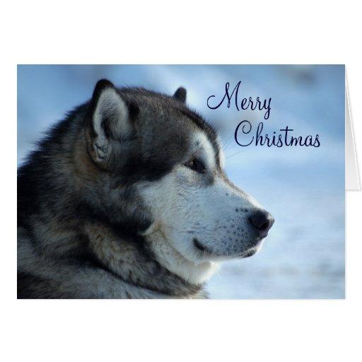 wolf weihnachtskarte frohe weihnachten gru karte zazzle. Black Bedroom Furniture Sets. Home Design Ideas