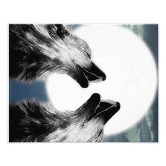Wölfe Fotodruck