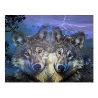 Wölfe in der Nacht Postkarte