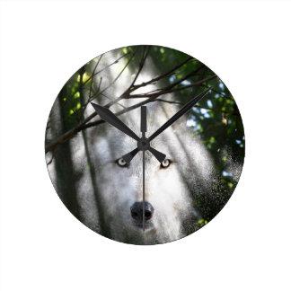 Wolfgesicht in einem Sunbeam Runde Wanduhr