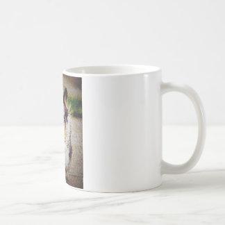 Wolljacken-WaliserCorgi Kaffeetasse