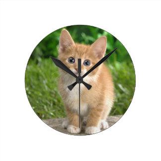 Wow-Katze! Runde Wanduhr