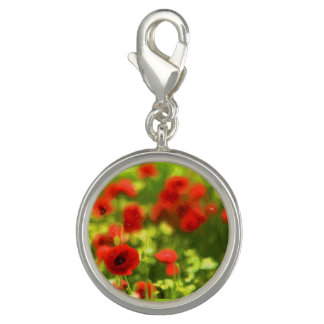Wunderbare Mohnblumen-Blumen VI - Wundervolle Foto Charms