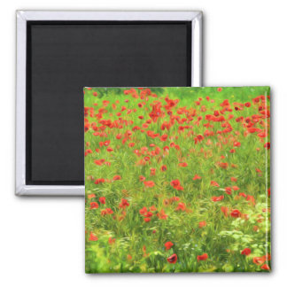 Wunderbare Mohnblumen-Blumen VII - Wundervolle Quadratischer Magnet