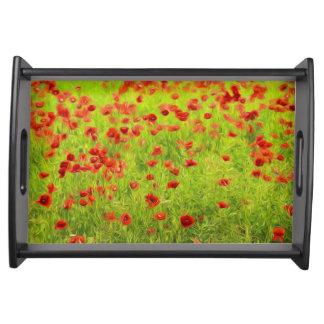 Wunderbare Mohnblumen-Blumen VIII - Wundervolle Tablett
