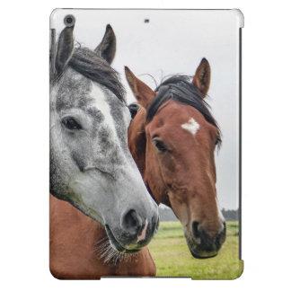 Wunderbare Pferdestallions-Fotografie iPad Air Hülle