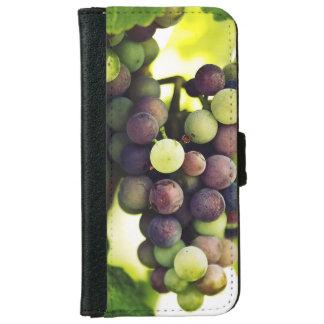 Wunderbare Rebe-Trauben, Herbst-Fall Sun iPhone 6/6s Geldbeutel Hülle