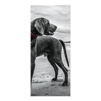 Wunderbarer Hund Individuelle Ankündigskarten