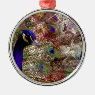 Wunderbarer Pfau lebt stolz auf seinen Schwanz Rundes Silberfarbenes Ornament