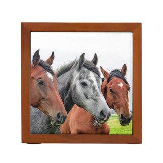 Wunderbares Pferdetier-Reinigen Stifthalter