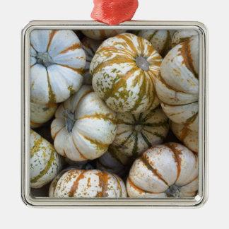 Wunderliche Kürbise Quadratisches Silberfarbenes Ornament