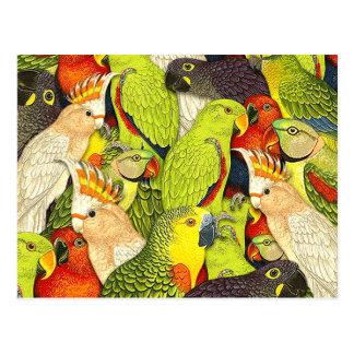 Wunderliches Natur-Grün plappert Vogel-Muster nach Postkarte