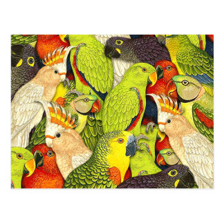 Wunderliches Natur-Grün plappert Vogel-Muster nach Postkarten