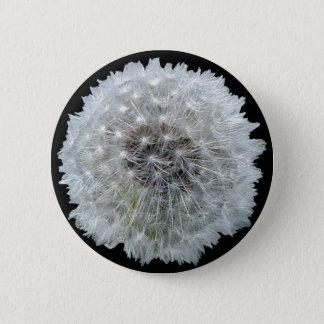 Wünsche sind geckig runder button 5,7 cm