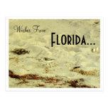 Wünsche von, Florida… Postkarte
