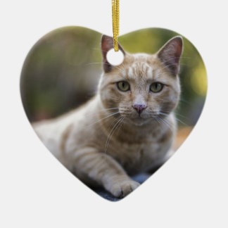 Wünschenswerte beige Tabby-Katze Keramik Herz-Ornament