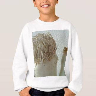 Wurzel des Porrees, Gemüse, gesunde rohe weiße Sweatshirt