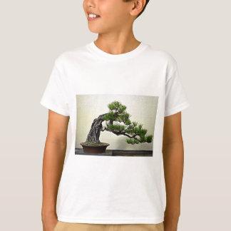 Wurzel über Felsen-Kiefern-Bonsais-Baum T-Shirt