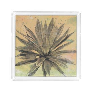 Wüste träumt | grüne Pflanze Acryl Tablett