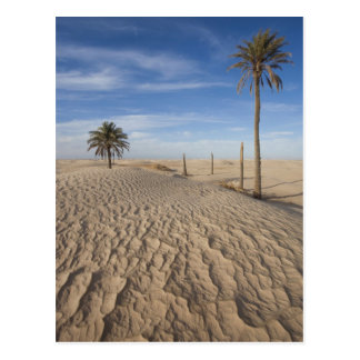 Wüste Tunesiens, Sahara, Douz, große Düne, Postkarte