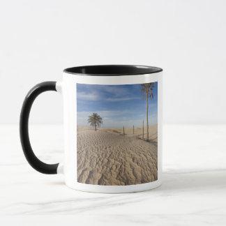 Wüste Tunesiens, Sahara, Douz, große Düne, Tasse