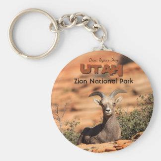 Wüstebighorn-Schafe Zion Utah Foto Schlüsselanhänger