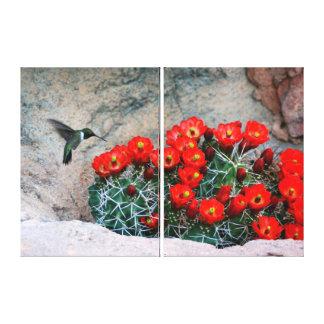 Wüsten-Kolibri-Verpackungs-Leinwand (spalten Sie Leinwanddruck