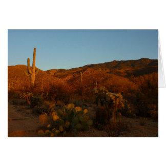 Wüsten-Landschaft des Saguaro-Sonnenuntergang-I Karte