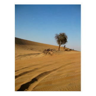 Wüsten-Safari Abu Dhabi Postkarte