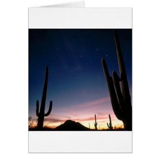 Wüsten-Stern schleppt Saguaro Arizona Karte