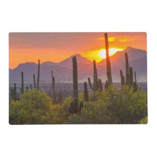 Wüstenkaktussonnenuntergang, Arizona Laminiertes Tischset