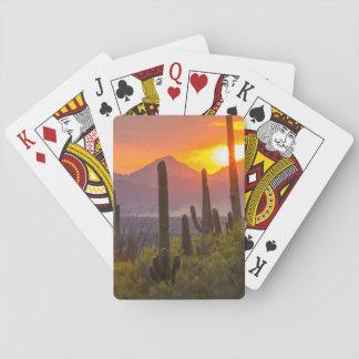 Wüstenkaktussonnenuntergang, Arizona Spielkarten