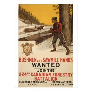 WW I ~ 224. kanadisches Forstwirtschafts-Bataillon Postkarte