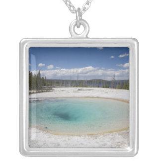WY, Yellowstone Nationalpark, Westdaumen-Geysir Versilberte Kette