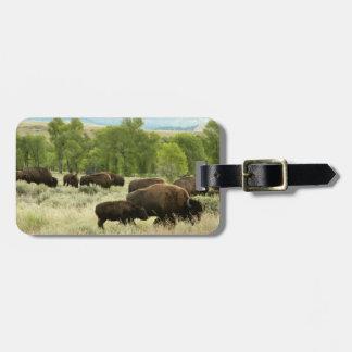 Wyoming-Bison-Natur-Tier-Fotografie Gepäckanhänger
