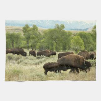 Wyoming-Bison-Natur-Tier-Fotografie Küchentuch