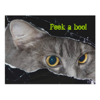 Xena Peekaboo Postkarte - besonders angefertigt
