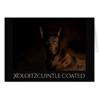 Xoloitzcuintle beschichtete Geeting Karte